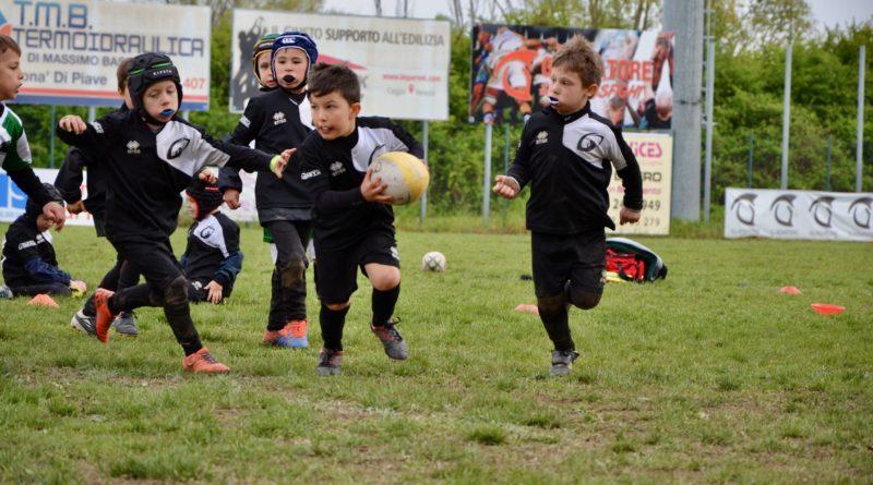 l'Under 6 in azione al torneo di San Donà dello scorso 14 aprile. Foto: Chiara Basana